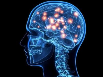 Отличия менингита и энцефалита